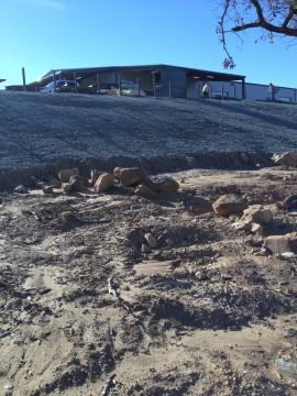 Curlex Erosion 019